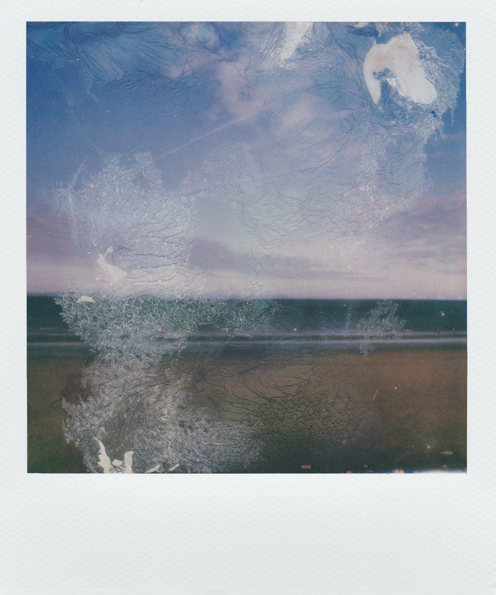 Of Swan Lake